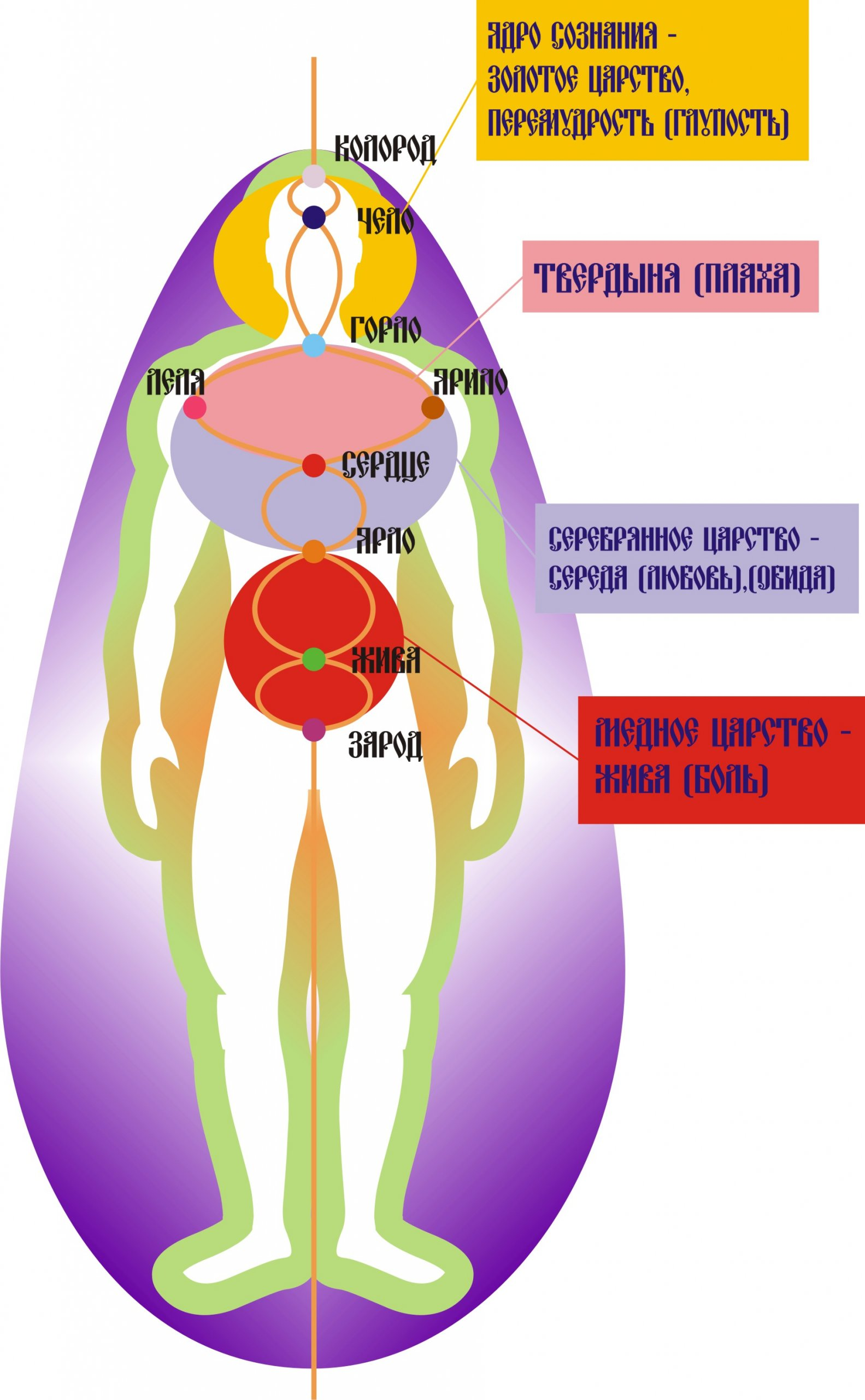 Строение тела и сознания у славян