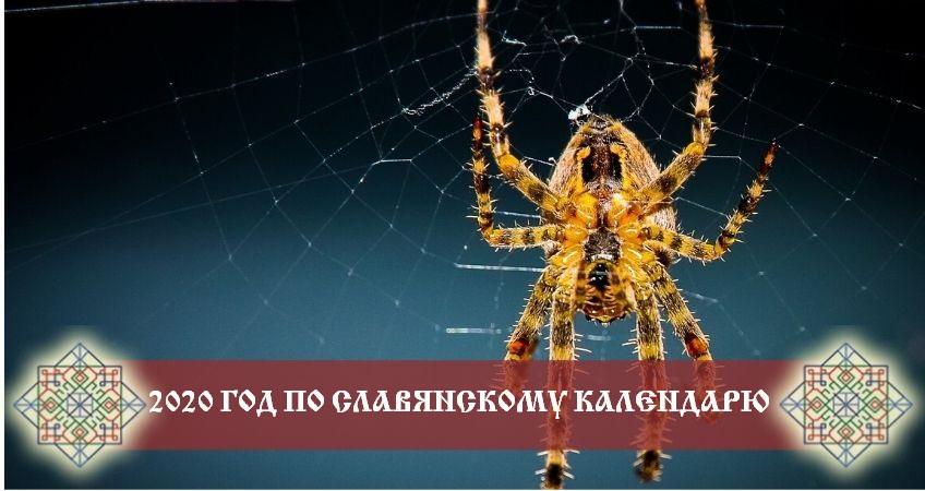 Прогноз на 2020 год по славянскому календарю