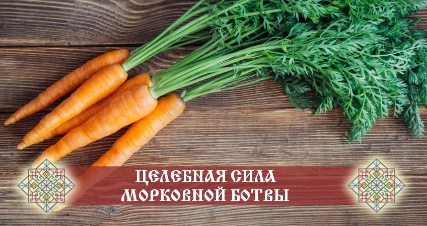 польза морковной ботвы для организма