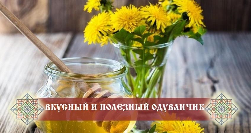 полезные рецепты из одуванчиков