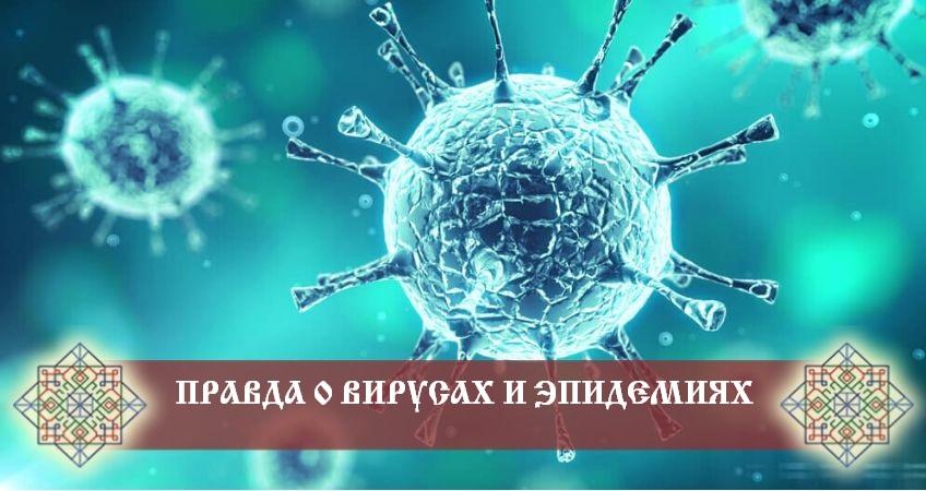 """Хотите знать правду? Понять, почему сейчас нас """"атакует"""" коронавирус?"""