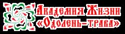 логотип академии жизни
