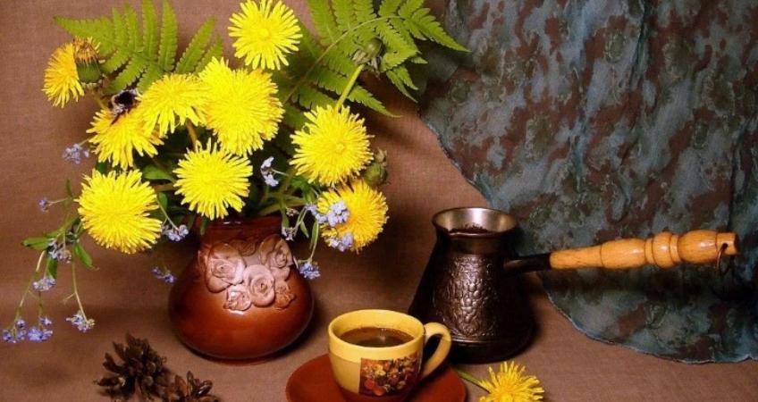 кофе из корня одуванчика
