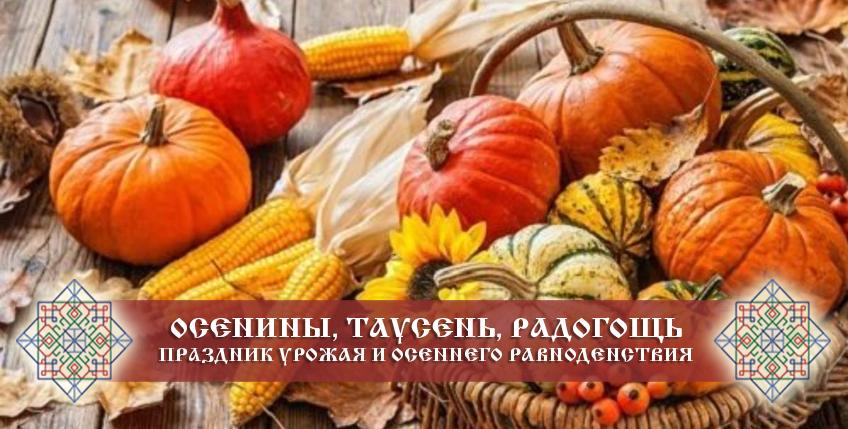 Осенины, Таусень, Радогощь — праздник урожая и осеннего равноденствия